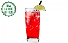 Healthy Bartender: Vodka Cranberry Fizz
