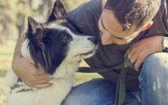 Sorry, Cat Lovers: Dogs Really Are Man's Best Friend