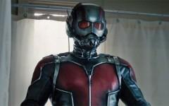 Above: Paul Rudd stars in 'Ant-Man'