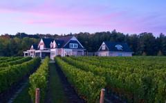 (Photo: Rennie Estate Winery)