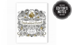 Above: Johanna Basford's second colouring book, 'Enchanted Forest' debuted in January