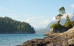 Above: The rocky shoreline of Tofino, Vancouver Island, Canada (Photo: chbaum/Shutterstock)