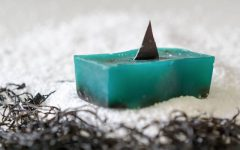 Above: Proceeds from Lush's Shark Fin soap will support late Canadian environmentalist Rob Stewart's ocean-conservation efforts