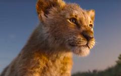 Above: A CGI Simba looks onto his pride.