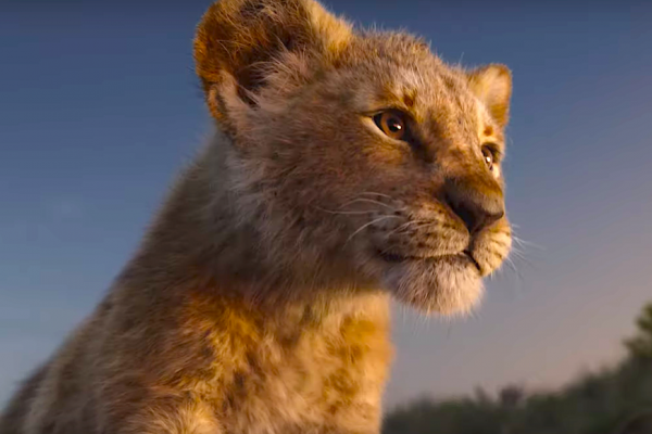 Above: A CGI Simba looks onto his pride.